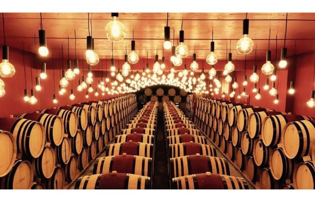 Weindegustation & Racletteplausch für 4 Personen im Weingebiet Jean-René Germanier