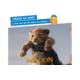 Eintrittskarten für den Film «Der König der Löwen» zu gewinnen