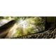 Gewinnen Sie Tickets für das Verkehrshaus Filmtheater