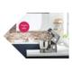 Gewinnen Sie eine Kenwood Titanium Chef Patissier XL Küchenmaschine