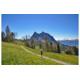 Gewinnen Sie 2 Billette von 2 Tagen für Bergbahnen Meiringen-Hasliberg AG im Wert von jeweils CHF 52.-