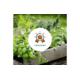 Gewinnen Sie jeden Monat Do it + Garden Gutscheine im Gesamtwert von CHF 500.-